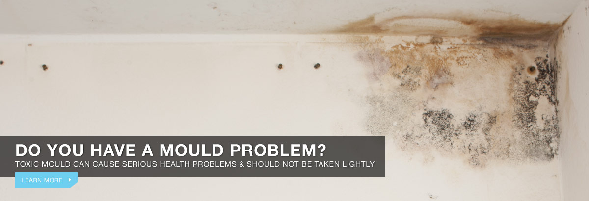 Do you have a mould problem?